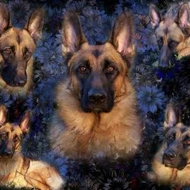 Angie Tirado - Forrest With Flowers - German Shepherd Dog