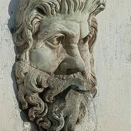 Michael Flood - Fountain Head