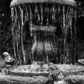 RicardMN Photography - Fountain