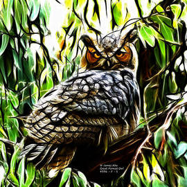 James Ahn - Fractal-S -Great Horned Owl - 4336