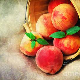 Darren Fisher - Fresh Peaches