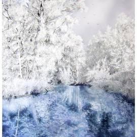 Maria Varga-Hansen - Frozen Beauty