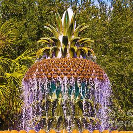 Al Powell Photography USA - Fruity Fountain