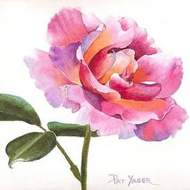 Pat Yager - Glowing Rose