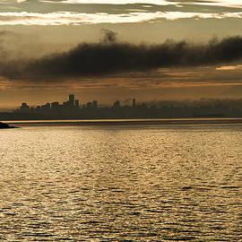 Maik Tondeur - Golden Morning Skyline