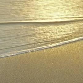 Michael Peychich - Golden Sands