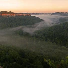 Ulrich Burkhalter - Good morning Kentucky