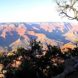 Will Borden - Grand Canyon 61