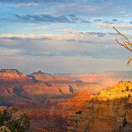 Heidi Smith - Grand Canyon Splendor