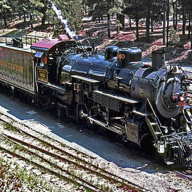 Bob and Nadine Johnston - Grand Canyon Train