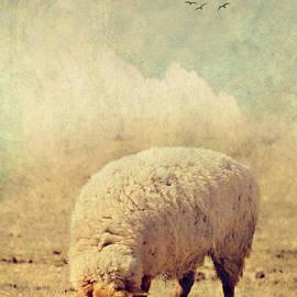 Kathy Jennings - Grazing Sheep