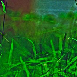 Kornrawiee Miu Miu - Green green grass of home