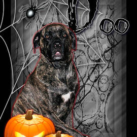 Renae Laughner - Halloween - Spooky Night - Mastiff