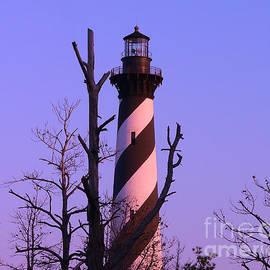 Al Powell Photography USA - Hatteras Light and Tree