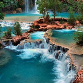 Marcus W Reinkensmeyer - Havasu Falls Oasis