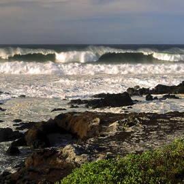Sally Weigand - High Ocean Surf