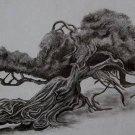 Joan Pye - Hobbit Tree