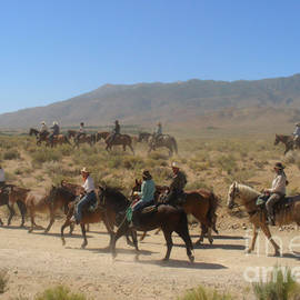 Christine Till - Horse Drive from June Lake to Bishop California