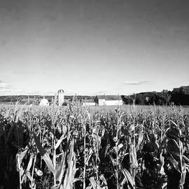 Jan Faul - How Corny