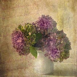 Michael Petrizzo - Hydrangea Blossoms