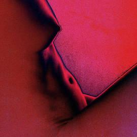 Jeff Breiman - I Dream In Color 1