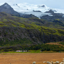 Levin Rodriguez - Icelandic farmland landscape