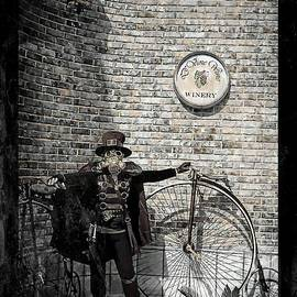 Tisha McGee - In the Age of Steampunk
