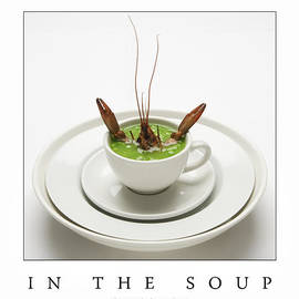 Frank Lee - In The Soup