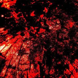 Allen n Lehman - Is Red Really Red