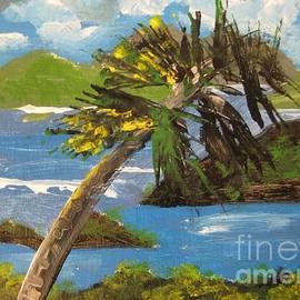 Judy Via-Wolff - Island Peace