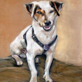 Tanya Patey - Jack Russell