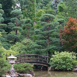 Bruce Bley - Japanese Garden