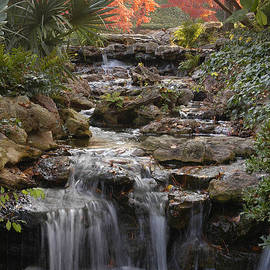 Greg Kopriva - Waterfall in the Japanese Gardens, Ft. Worth, Texas