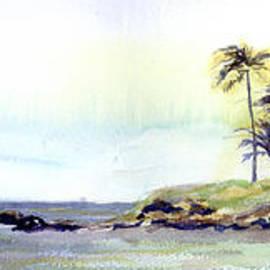 Elena Liachenko - Kailua Beach Oahu Hawaii