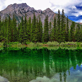 Blair Wainman - Kananaskis Quietude