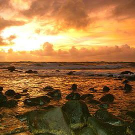 Michael Peychich - Kauai Copper Sunrise