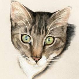 Heather Mitchell - Kitten