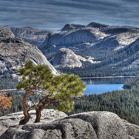 Joe Schofield - Lake Tenaya from Olmsted Point
