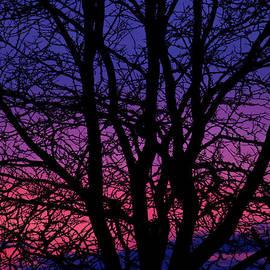 Andrew Soundarajan - Layers of Sunset