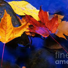 Bob Christopher - Leaves Of Autumn