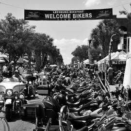 David Lee Thompson - Leesburg Bikefest 2012 work A