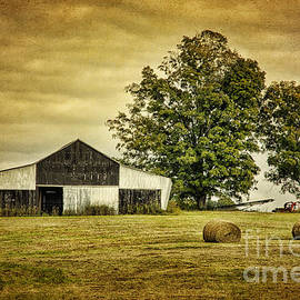 Cheryl Davis - Life On The Farm