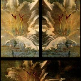 Lois Bryan - Lily Collage