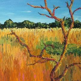 Art Nomad Sandra  Hansen - Looking for Tigers