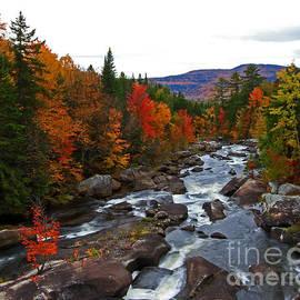 Lloyd Alexander - Magalloway River in Fall