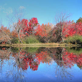 Lori Deiter - Maine - Autumn Reflections