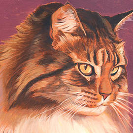 Shawn Shea - Maine Coon Portrait