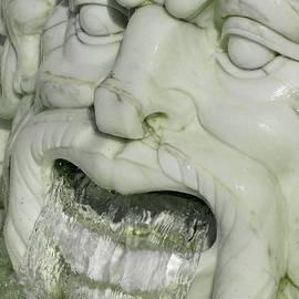 Ann Horn - Marble Head