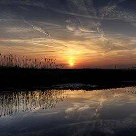 Lee-Anne Rafferty-Evans - Marsh Sunset