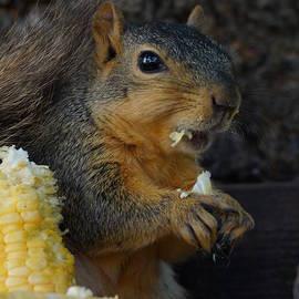 Lori Tordsen - Me love sweet corn